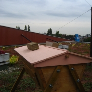 One of the beehives