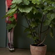 Charlotte Kan by Carina Hesper