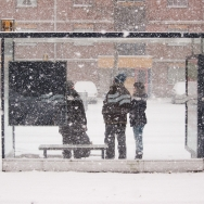03-120203-snow