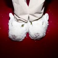 shoeless015