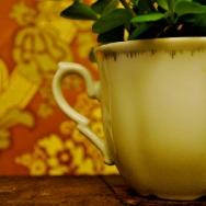 Spots: Café Brecht