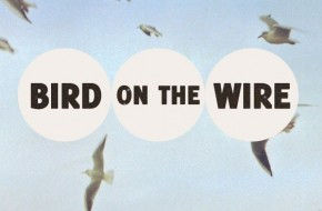 Local indie folk/pop band Bird on the Wire release new modern art inspired single
