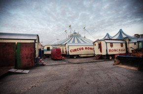 Experience Wunderbar's Cirque du Soleil at Woodstock's beach!