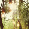 For lovers of nature and music, Live at Amsterdamse Bos