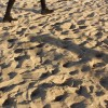 Video Friday: Amsterdam's city beaches