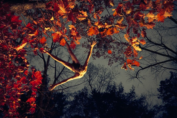 Jumping Red Leaves