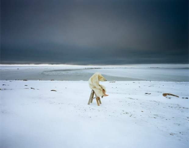 Polar bear From the series: Iglooik / uit de serie: Iglooik, Canada, 2007 Courtesy Michael Hoppen, London / Londen Courtesy Vous Etes Ici, Amsterdam © Scarlett Hooft Graafland