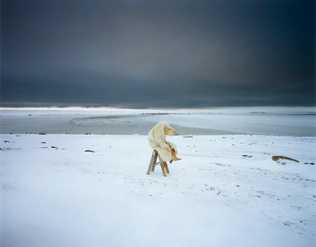 Polar bear From the series: Iglooik / uit de serie: Iglooik, Canada, 2007 Courtesy Michael Hoppen, London / Londen Courtesy Vous Etes Ici, Amsterdam © Scarlett Hooft Graafland