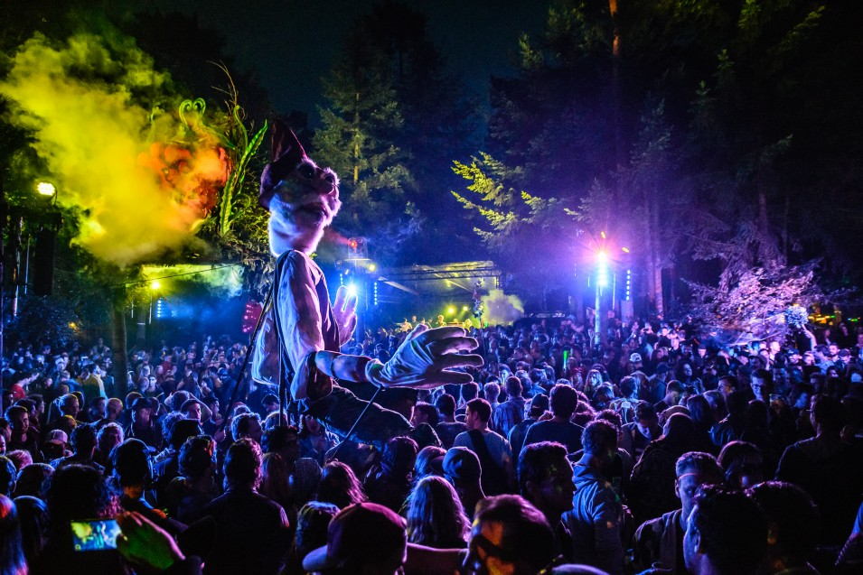 Magic from the Dam at Into The Woods Festival